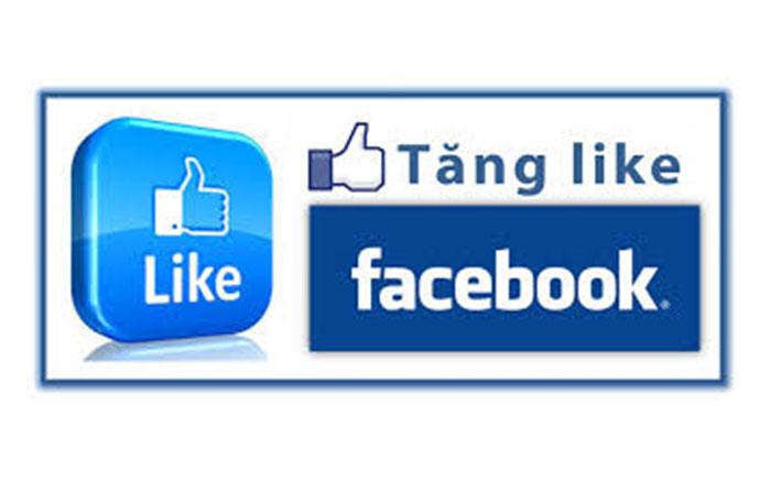 facebook-ccdemlike-2
